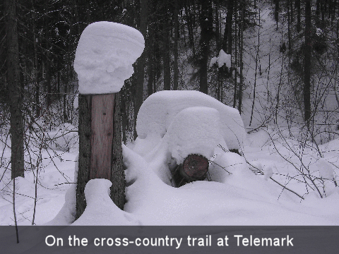 cross_country_01